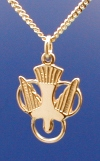 Holy Spirit Confirmation Medal - Gold Filled, # 4593