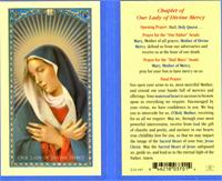 Chaplet of Our Lady of Divine Mercy Laminated Holy Card, # 18335