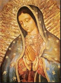 "19"" x 27"" Poster of Our Lady of Guadalupe, Italian gold embossed, #, 98457"